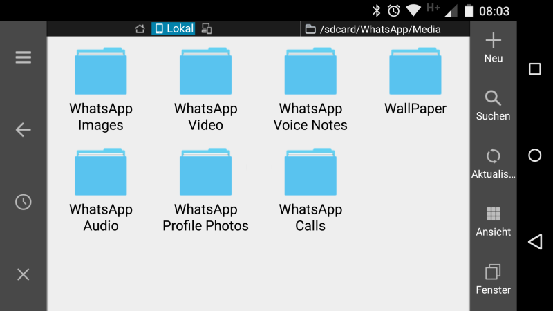 whatsapp calls (2)
