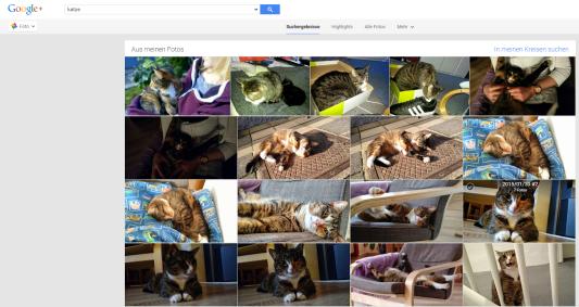 google+ plus katze fotos photos